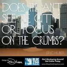 Focus for Success - Blue Zoo Creative