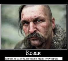 """Лукаш """"не в восторге"""" от введения уголовной ответственности за клевету - Цензор.НЕТ 2967"""