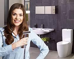 Aqua Nexis Premium Bidet <b>Sprayer</b> for <b>Toilet</b>, Stainless Steel ...