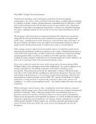 undergraduate essays nus application essay undergraduate sample