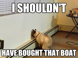 I Present Regretful Cat : AdviceAnimals via Relatably.com