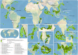 conservation magazine and esri announces the winners of the worldwide green turtle nesting sites 2011 essay map 10mb