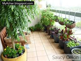 Kitchen Herb Garden Design Garden Design Garden Design With How To Start An Apartment Garden