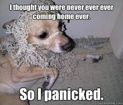 Jammi panicked memes | quickmeme via Relatably.com