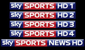 Image result for SKY SPORTS LOGO