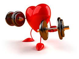 Znalezione obrazy dla zapytania heart clipart medical