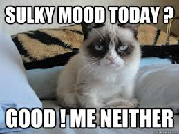 Sulky mood today ? Good ! Me neither - Misc - quickmeme via Relatably.com