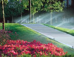 Image result for irrigation