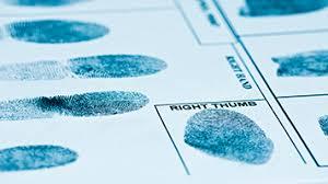 the new detectives case studies in forensic science jpg SlideShare
