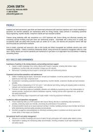 sample of professional summary in resume sample customer service sample of professional summary in resume 28 sample resume summary statements about career objectives professional