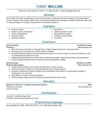 unforgettable web developer resume examples to stand out    web developer resume sample