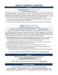 resume sample resume college recruiter  seangarrette coit director sample resume  it director sample resume