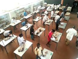 examinations at department of veterinary anatomy and physiology chiromo these end of semester exams are meant to end by this week of 27th february anatomy office
