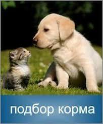 Natural & Delicious беззерновой корм для собак - <b>Фармина</b>