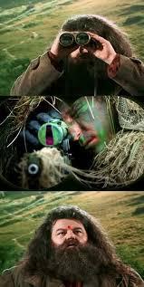 Harry Potter Hagrid Meme - Template Provided - should provide ... via Relatably.com