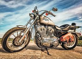 Алмазная мозаика Цветной <b>Harley</b>-Davidson Sportster (40х50) на ...