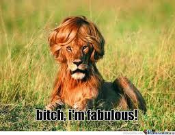 Feeling Fabulous Memes. Best Collection of Funny Feeling Fabulous ... via Relatably.com