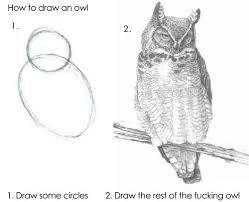 How To Draw an Owl | Know Your Meme via Relatably.com