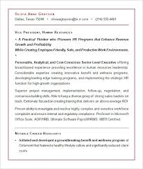 executive resume sample for hr vp sample resume executive