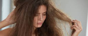 5 <b>шампуней для сухих</b> волос на любой бюджет — подборка в ...
