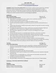 sample musician resume  professional musician resume template    sample musician resume