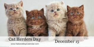 CAT HERDERS DAY - December 15 - National Day Calendar