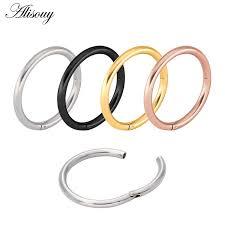 <b>1PC</b> G23 Stainless Hinged <b>Segment</b> Nose Ring 16g&14g Nipple ...