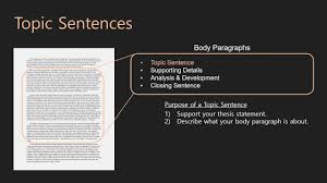 essay writing body paragraphs topic sentences essay writing body paragraphs 07 topic sentences