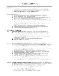 accomplishment based resume example  director of finance resume    early childhood education resume objective