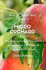 How to plant fruit trees and create a <b>mini</b> orchard