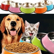 pet feeder durable stainless steel dog cat bowls universal non spill food bowl supplies water