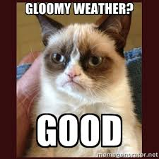 Gloomy weather? GOOD - Tard the Grumpy Cat | Meme Generator via Relatably.com