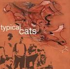 Reinventing the Wheel by Typical Cats