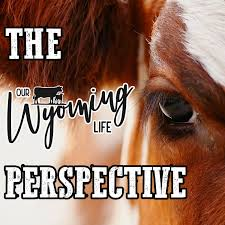 The Our Wyoming Life Perspective