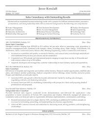 car resume objective car s associate job description resume s consultant resume automobile s consultant resume dimpack com