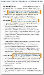 sample career counselor resume
