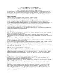 essay school essay examples nursing school essay samples pics essay essays about nursing top school essay examples