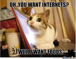 Fat Cat Is Hungry Memes. Best Collection of Funny Fat Cat Is ... via Relatably.com
