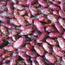 China <b>Hot Selling Wholesale Purple</b> Speckled Kidney Beans ...