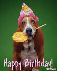 Funny dog birthday | Greetings-b'day, anniversary., sympathy, etc ... via Relatably.com
