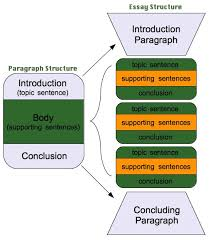 structure of an essaygreat visual to explain the structure of a  paragraph essay     great visual