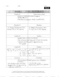 meiosis worksheet delibertad science 09 worksheets mr lo meiosis essay