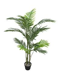 Cooper & Co 135cm Tall Potted <b>Artificial Phoenix Palm</b> | MYER