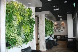 images indoor living wall peets coffee indoor tropical green wall