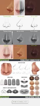 ideas about art reference drawing reference tim von rueden takes you through drawing the nose in a front side and frac34 view 9733 character design references love character design