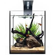 ecoxotic ecopico officedesktop aquarium kit with led lighting 5 gallon office desk aquarium