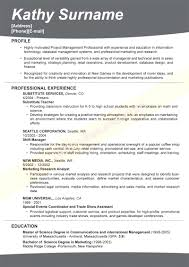 most successful resume templates cipanewsletter effective resume templates template