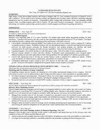 marketing digital marketing resume template digital marketing resume picture full size