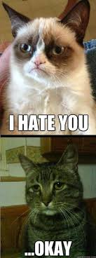 Best of the 'Depressed Cat' Meme! / SMOSH on imgfave via Relatably.com