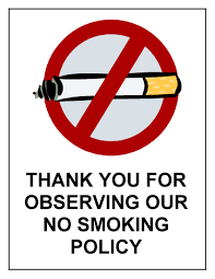 ban smoking in public places opinion essay mfacourses web fc com ban smoking in public places opinion essay